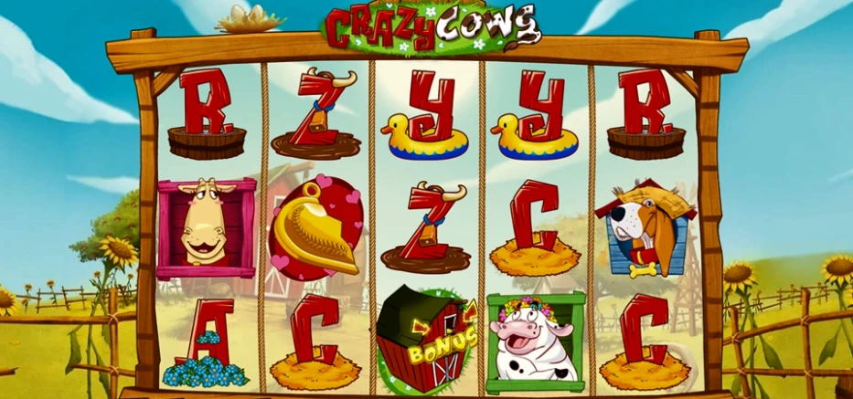 Knowledge on Crazy Cows slot machine game